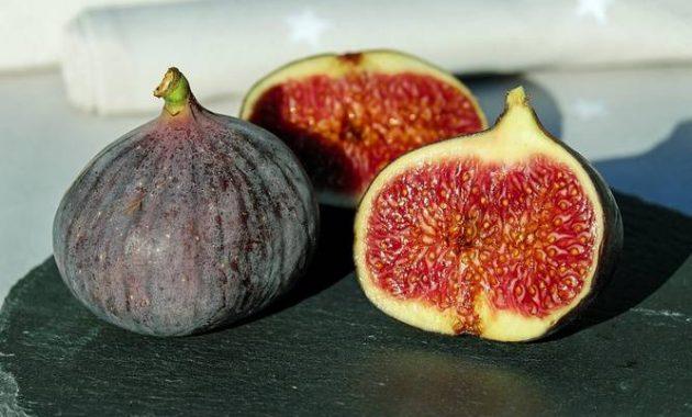 manfaat buah tin untuk kesehatan