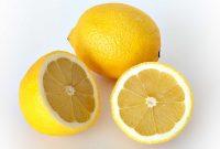 Cara Menanam Jeruk Lemon Agar Cepat Berbuah